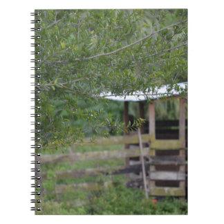 Baum und altes Scheunenflorida-Foto Spiral Notizblock