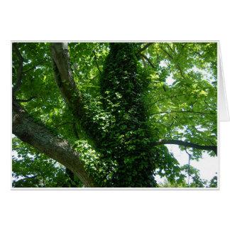 Baum und Efeu Karte