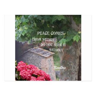 Baum und Wand mit Budha Mitteilung Postkarte