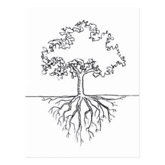 Baum-Wurzeln Postkarte