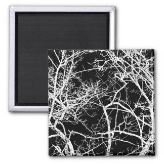 Baumaste auf schwarzem Hintergrund Quadratischer Magnet