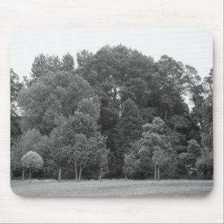 Bäume am Hinterkanten-Park, Cardiff - BW Mousepad