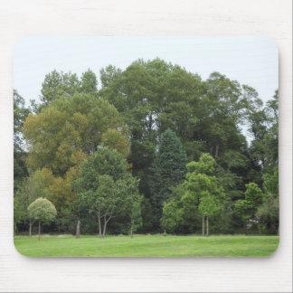 Bäume am Hinterkanten-Park, Cardiff Mousepad