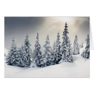 Bäume bedeckt mit Hoarfrost und Schnee Karte