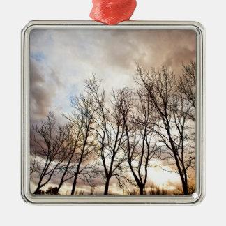 Bäume des Waldes am Sonnenuntergang mit bewölktem Silbernes Ornament