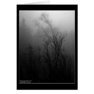 Bäume im Nebel Karte