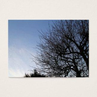 Bäume im Winter-Sonnenuntergang-Garten Visitenkarte