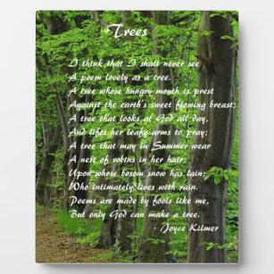 Bäume vorbei: Joyce Klimer Fotoplatte
