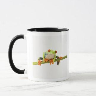 Baumfrosch auf Stamm Tasse
