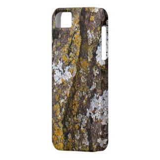 Baumrinde mit Flechten Hülle Fürs iPhone 5