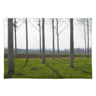 Baumstämme und die französische Landschaft Stofftischset