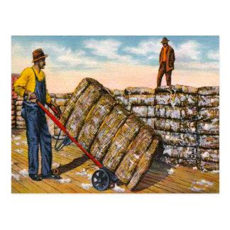 Baumwollballen in den zwanziger Jahren des tiefen Postkarte