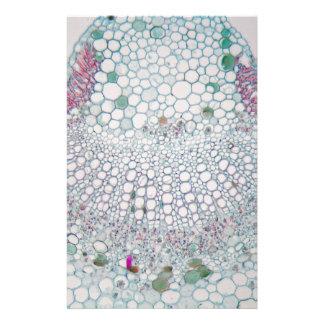 Baumwollblatt unter dem Mikroskop Briefpapier
