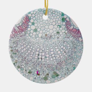 Baumwollblatt unter dem Mikroskop Keramik Ornament