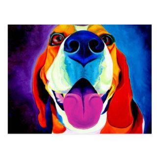 Beagle #3 postkarte