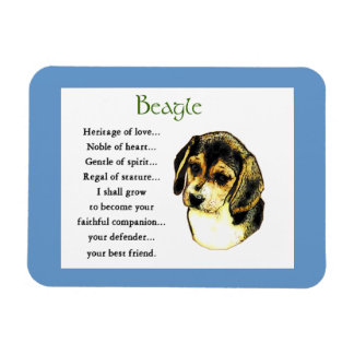 Beagle-Erbe der Liebe Magnet