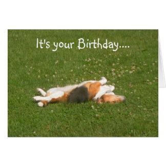 Beagle-Geburtstags-Karte (lustig)