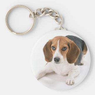 Beagle-Hund Keychain Schlüsselanhänger