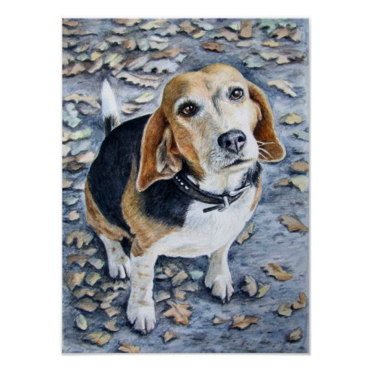 Beagle in Autumn Poster