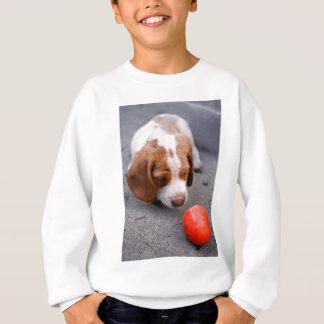 Beagle - Jagdhundhundewelpe Sweatshirt