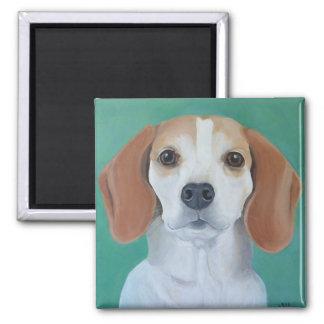 Beagle-Magnet Quadratischer Magnet