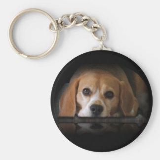 Beagle-Schlüsselkette Schlüsselanhänger