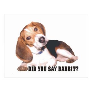 Beagle tat Sie, Kaninchen zu sagen? Postkarte