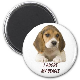 Beagle verehren Magneten Runder Magnet 5,1 Cm