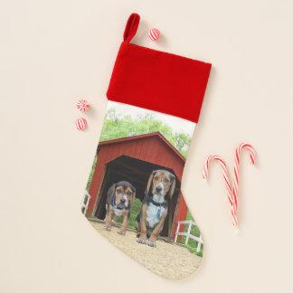Beagle verfolgt Sandy-Nebenfluss-bedeckte Brücke Weihnachtsstrumpf