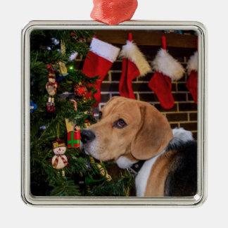 Beagle-Weihnachten Silbernes Ornament
