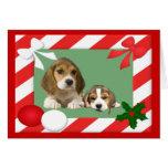 Beagle-Weihnachtskarten-Rahmen