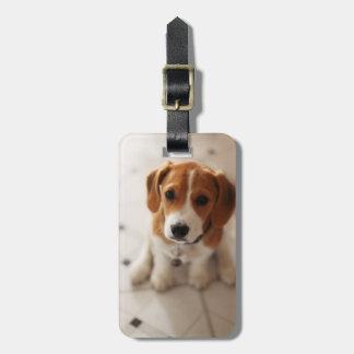 Beagle-Welpe 2 Kofferanhänger