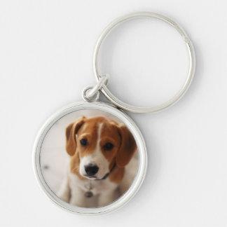 Beagle-Welpe 2 Schlüsselanhänger
