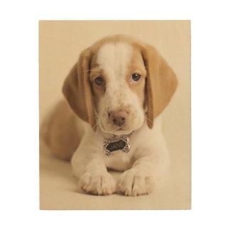 Beagle-Welpe Holzwanddeko