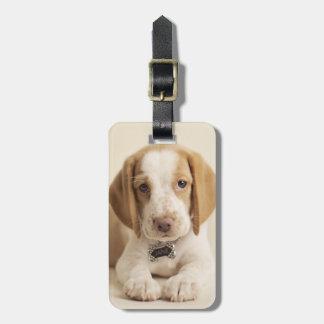 Beagle-Welpe Kofferanhänger