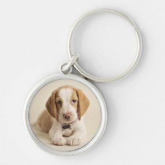 Beagle-Welpe Schlüsselanhänger