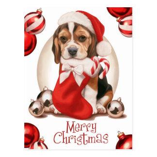 Beagle-Welpen-Weihnachten Postkarte