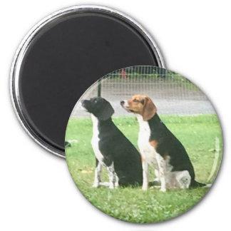 Beagles Runder Magnet 5,7 Cm
