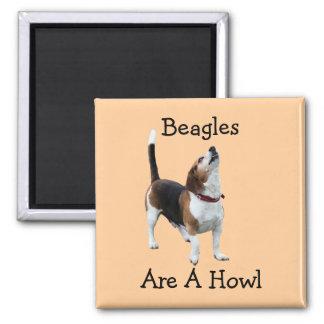 Beagles sind ein Heulen-lustiger Hund Quadratischer Magnet