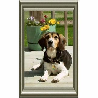 Beagles sind schön freistehende fotoskulptur