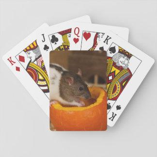 beängstigende schwarze mit Kapuze Ratte, die Spielkarten