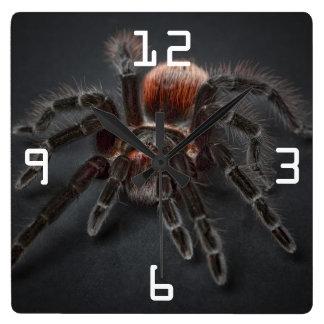 Beängstigende Tarantula-Spinne Arachnophobia Quadratische Wanduhr