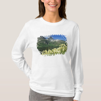 Beargrass nahe Logan-Durchlauf in Gacier T-Shirt
