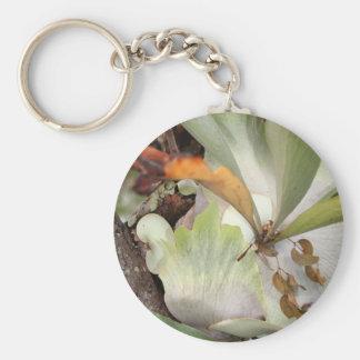 Beauteous Bromeliad Schlüsselanhänger