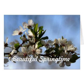 Beautiful Springtime Karten