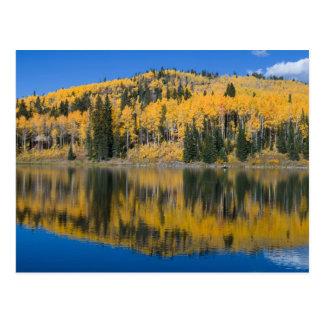 Beaver See in der Herbst-Postkarte Postkarte