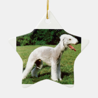 Bedlington Terrier Hund Keramik Ornament