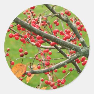 Beeren-Bush-Aufkleber Runder Aufkleber