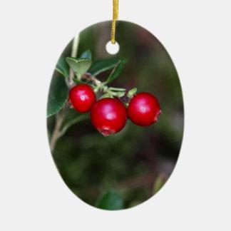 Beeren eines wilden Lingonberry (Vaccinium Keramik Ornament