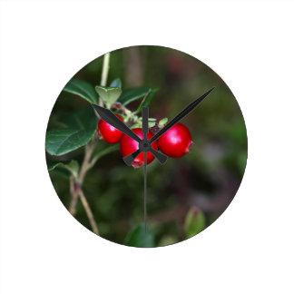 Beeren eines wilden Lingonberry (Vaccinium Runde Wanduhr